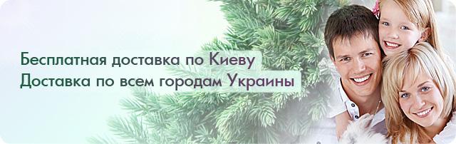 Доставка по Киеву - бесплатно